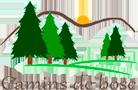 Camins de bosc